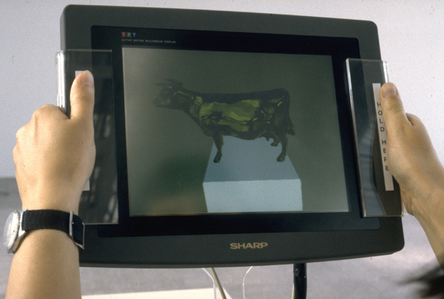 The Golden Calf, 1994, Jeffrey Shaw, Computergraphic installation. (Used with permission.)