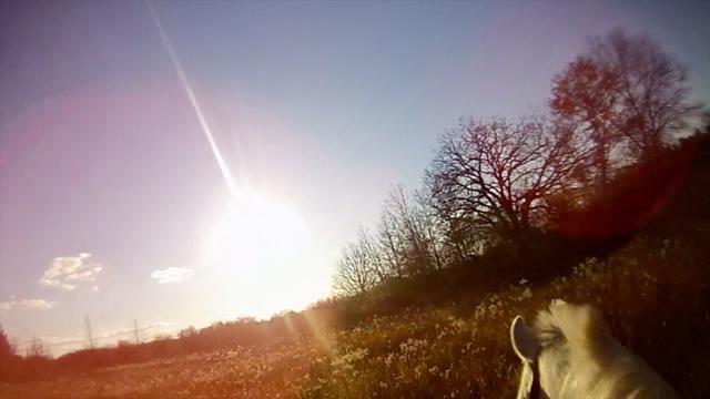 She Set Out into the Forest 2, 2012, Valentina Vella, video still, ©Valentina Vella.