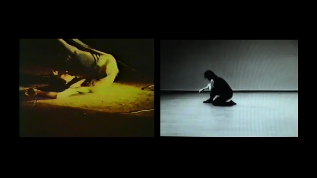 IGVONNE Motion Study, 2012, Linda Post and Robert Appleton, video, ©Linda Post.