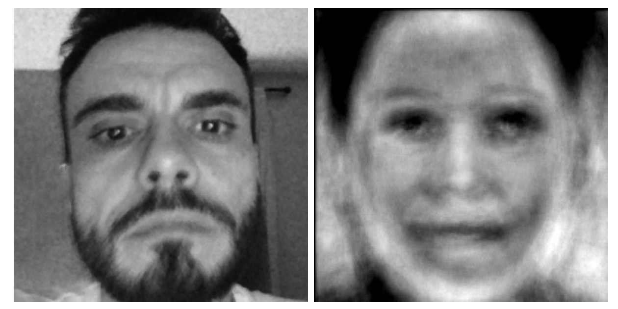 Facial manipulation with Anti Face, 2014, Mers & Woodley, produced through custom software, ©Robert Woodley and Adelheid Mers.