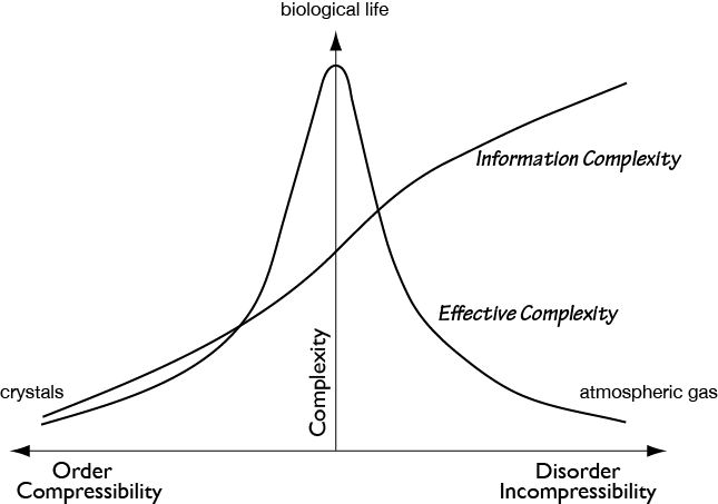 Information complexity compared with effective complexity, ©Philip Galanter.