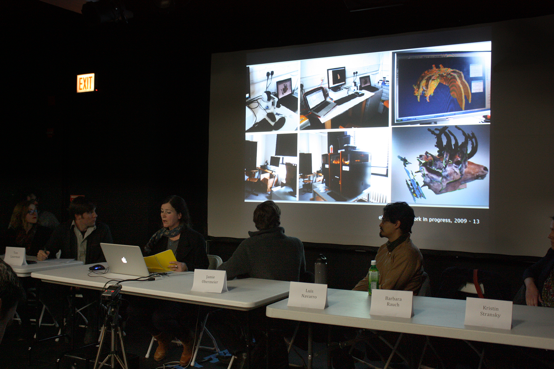 3D Printing Roundtable Presentation, 2014. Barbara Rauch. ©Rachel Clarke. (Used with permission.)