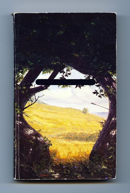 Glade, 2012, Justin Berry, archival inkjet print