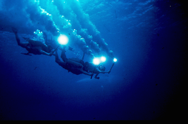 The Silent World, 1956, dir. Jacques-Yves Cousteau and Louis Malle, film still, © Columbia Pictures. (Fair use.)