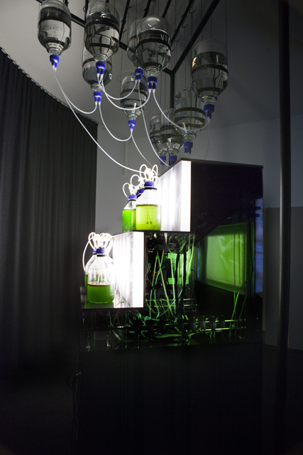 Le Temporium, 2014, autonomous machine for the continuous creation of Algaegraphies. Lia Giraud (SACRe / EnsadLab - PSL). Used with permission.