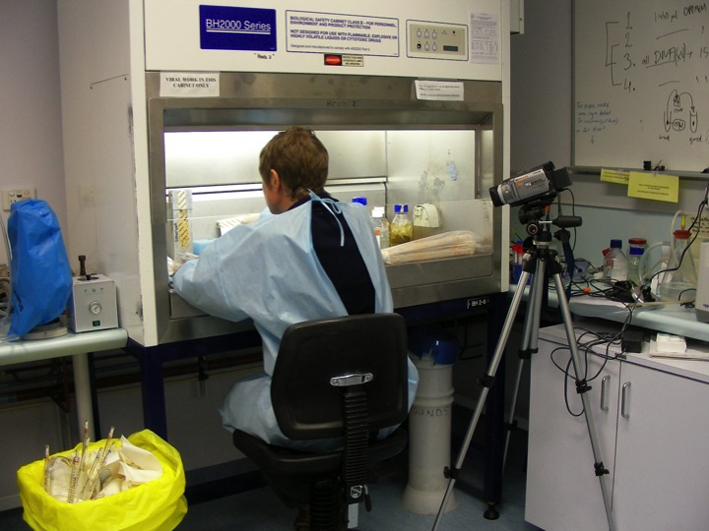 Working in the Lab. Photograph by Joshua Schwebel, 2009.  Used with permission.