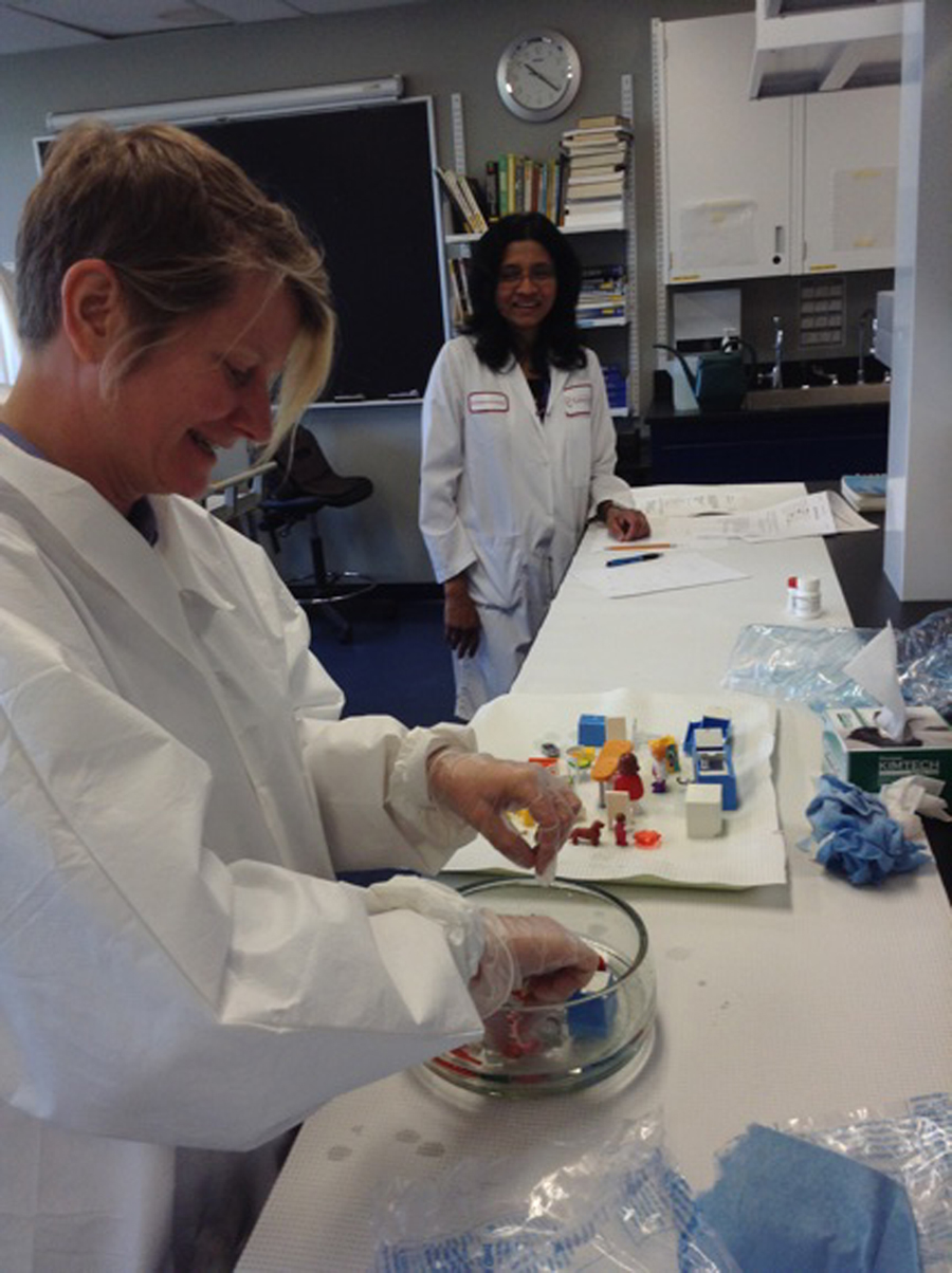 """Collaboration with Fluxmedia, Department of Communication Studies and Biology Department at Concordia University and Synbiota,2014.  Tagny Duff and Sathiyabama Kanaganayagam preparing for a synthetic biology class using the Genomikon kit to create genetically modified organisms to """"paint"""" 3D dioramas of various landscape scenes coated with agar. Organized by Tagny Duff (Fluxmedia), Justin Pahara (Synbiota) and Sathiyabama Kanaganayagam (Biology) with additional support from Sonia Ruiz (Biology). Photo © Justin Pahara. Used with permission."""