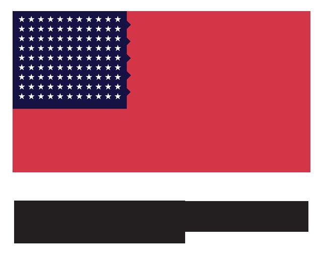 Ninety-Nine Star Flag Design, 2007, Marc Tasman digital and textile media, © Marc Tasman. (Used with permission.)