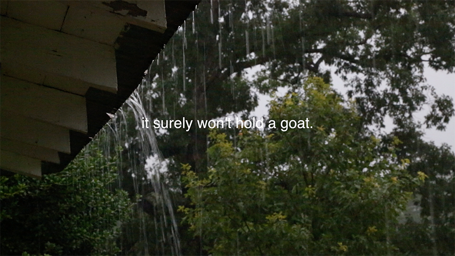If it Won't Hold Water, it Surely Won't Hold a Goat, 2014, Erin Colleen Johnson, video still, © Erin Colleen Johnson. (Used with Permission.)