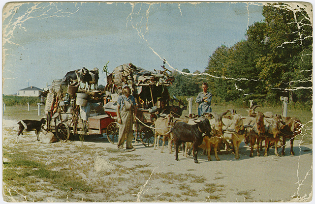 Chess McCartney's Goat Caravan, postcard, North Carolina Collection Photographic Archives, Wilson Library, UNC-Chapel Hill.